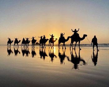 Moroccan sunset dromedary ride.
